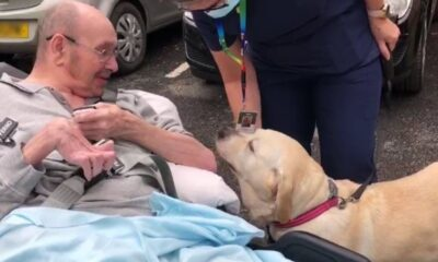 Care home resident reunited with his dog